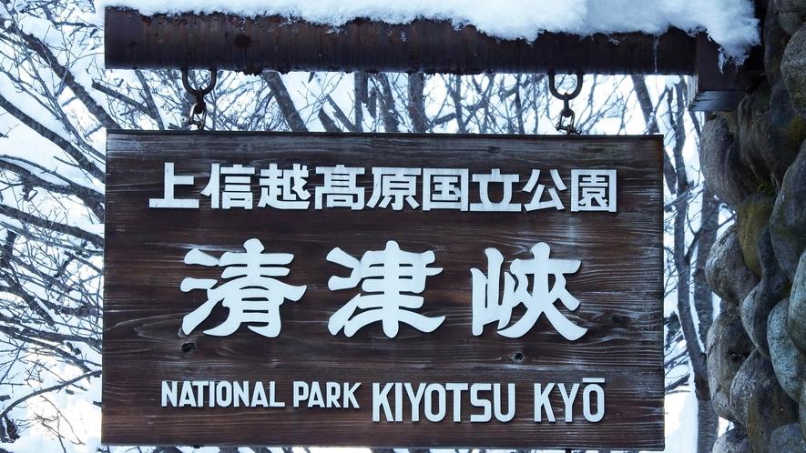 【清津峡】渓谷トンネルの中にある4カ所の見晴所から安全に鑑賞することができます。※冬期間は休業
