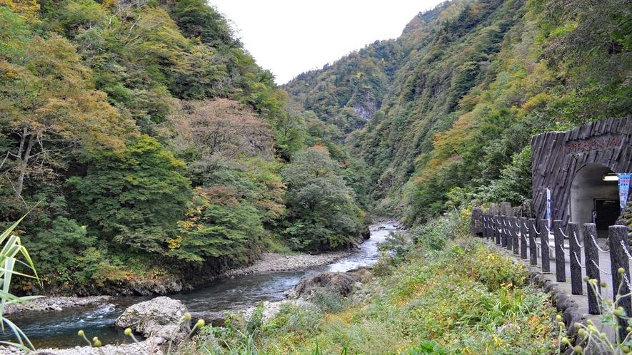 【清津峡】宿周辺は清津川が流れる自然豊かな場所です