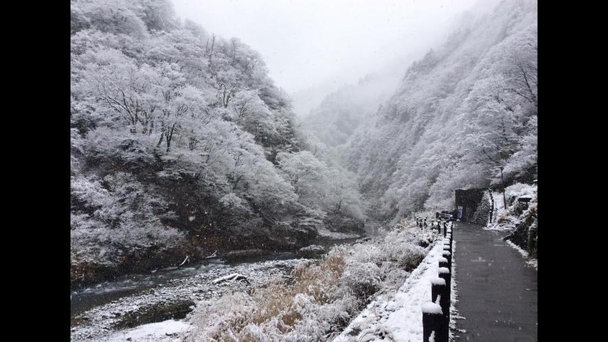 【清津峡・冬】大自然をご堪能いただけます