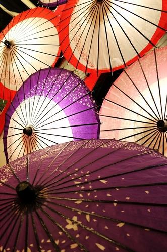 みはる苑の絵になる日本傘