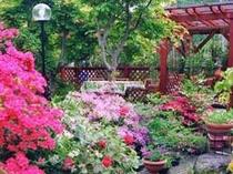 庭には 花がたくさん咲いています