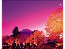 夕焼けの富士と紅葉