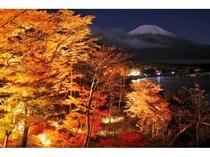 ' 日本の渚 百選 ' の山中湖『夕焼けの渚』の紅葉 Ⅰ