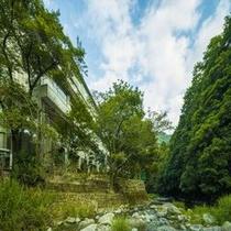 自然豊かな犬鳴山で森林セラピー