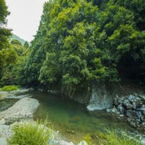 犬鳴山の山と川