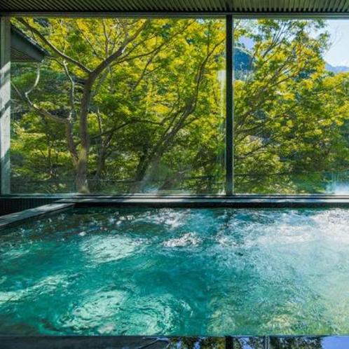 犬鳴山の美しい木々を眺める男性内湯