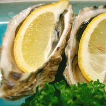 【生ガキ】新鮮な的矢カキはキュッとレモンを絞ってお召し上がりください