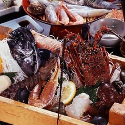 今日のお魚は、鯛?スズキ?ブリ?