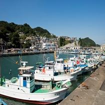 石鏡漁港。この港から、何隻もの船が、出漁します。当館の船も、ここから出発して、皆様に召し上がっていた