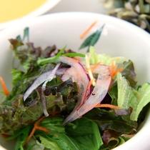 *サラダ◆シャキッと新鮮野菜をどうぞ!