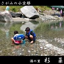 夏の川遊びは楽しいですよ!