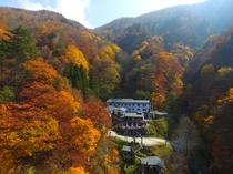 秋の宿全景標高1126と紅葉