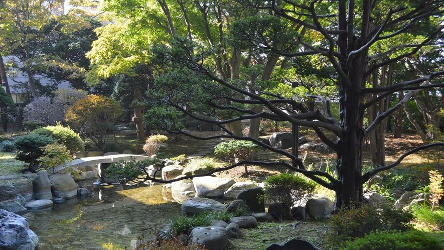 【日本庭園】変わらずそこにあり続けながらも、常に異なる表情を見せる景観美。