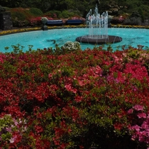 *【強羅公園】箱根フリーパス利用特典ありです。