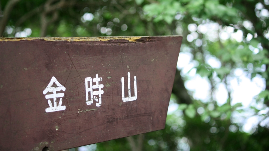 *【金時山】金時山登山口までは徒歩約5分!トレッキングに最適です。