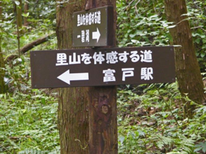 一碧湖から富戸港まで、ここから歩きます。