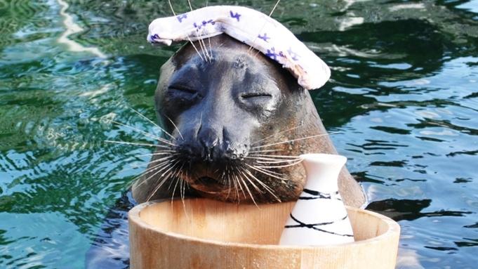 【箱根園水族館入場券付き♪】日本で一番標高の高い海水水族館!人気のアザラシに会いに行こう♪【朝夕付】