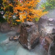 【貸切風呂~木もれびの湯~】