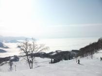 三ノ倉スキー場 ゲレンデ風景