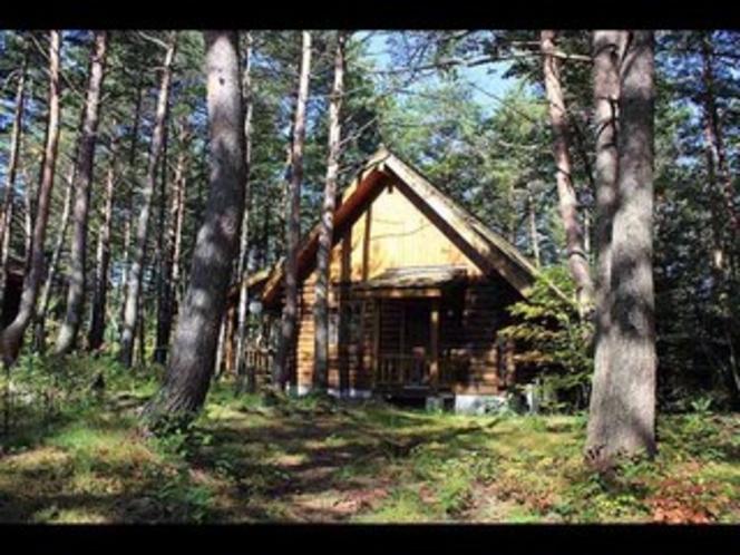 国立公園の自然に囲まれたプライベートコテージ(ログタイプ)外観6
