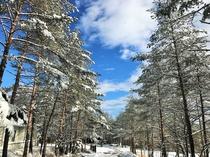 冬のメインアプローチと青空