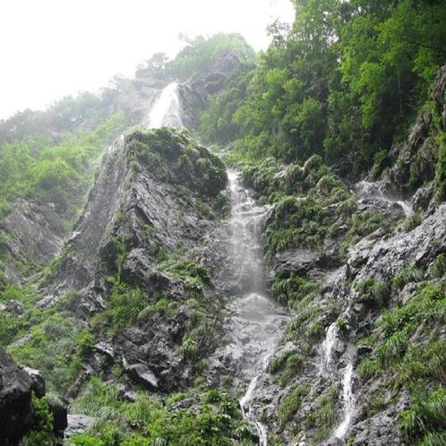 【清滝】落差約60メートルを誇り「えひめ自然百選」のひとつにもなっています。