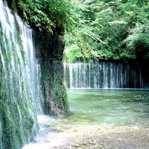 周辺観光地「白糸の滝」