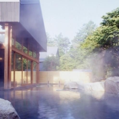 周辺観光地「星野温泉 トンボの湯」