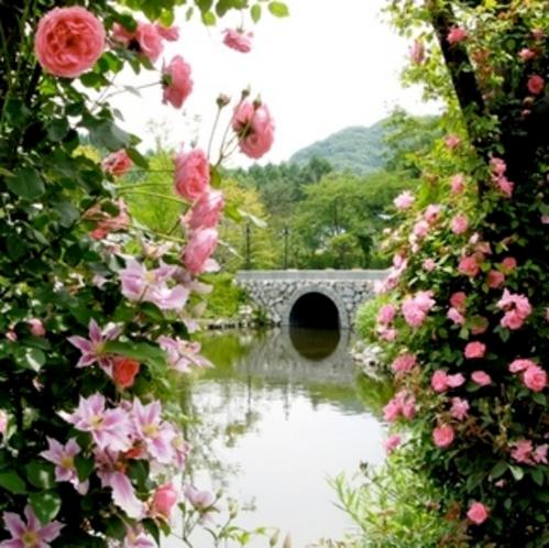 周辺観光地「軽井沢レイクガーデン」
