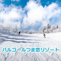 パルコールつま恋スキーリゾート(車で約45分)