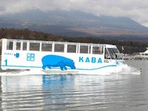 山中湖 カババス(ホテルより車で約40分)
