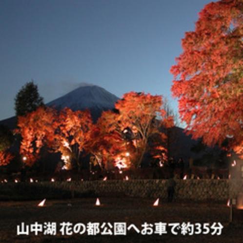 秋:山中湖花の都公園へお車で約35分