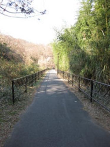 散歩やサイクリングをお楽しみください。下津井電鉄線跡「風の道」