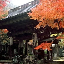 鶴布山 珍蔵寺
