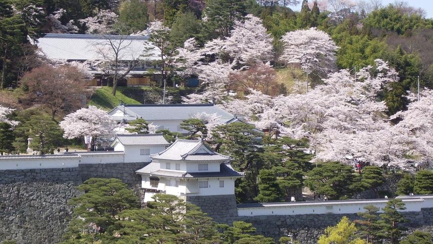 春の霞ヶ城公園