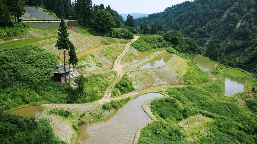 【棚田風景】日本の里百景に選ばれた美しい景色が広がります。