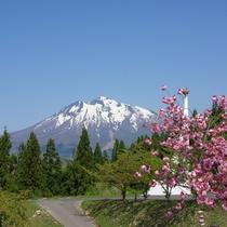 天文台から望む岩木山