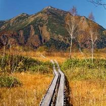 **尾瀬ハイキング/草紅葉の尾瀬ヶ原から見る至仏山