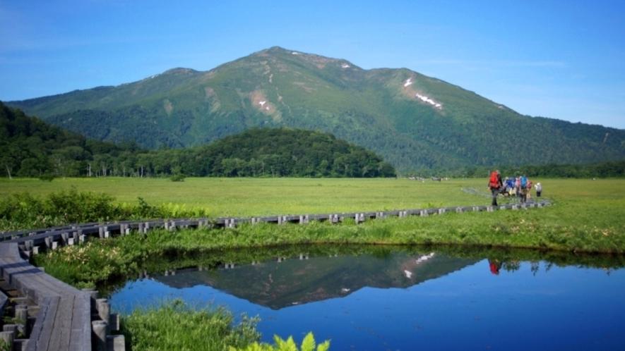 尾瀬国立公園は美しい自然と爽やかな空気を楽しみ、トレッキングに最適です。