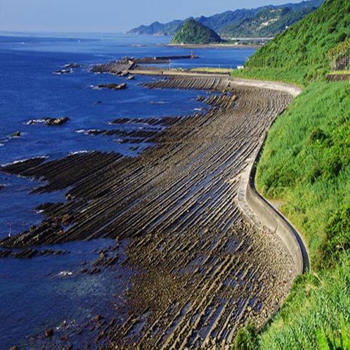 ◆青島海岸