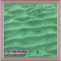 透明度抜群のビーチ