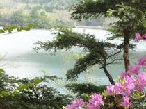春の湯の湖