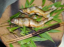 ジャンボ落ち鮎の塩焼き