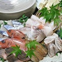 魚すきプラン