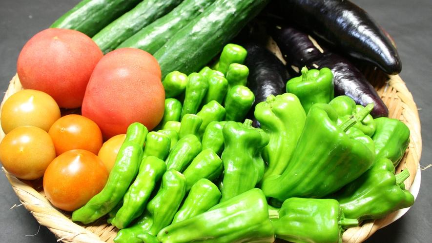 ・有機肥料で女将が育てたこだわり自家製無農薬野菜
