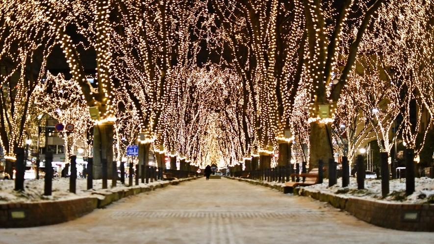 仙台冬の風物詩~SENDAI光のページェント