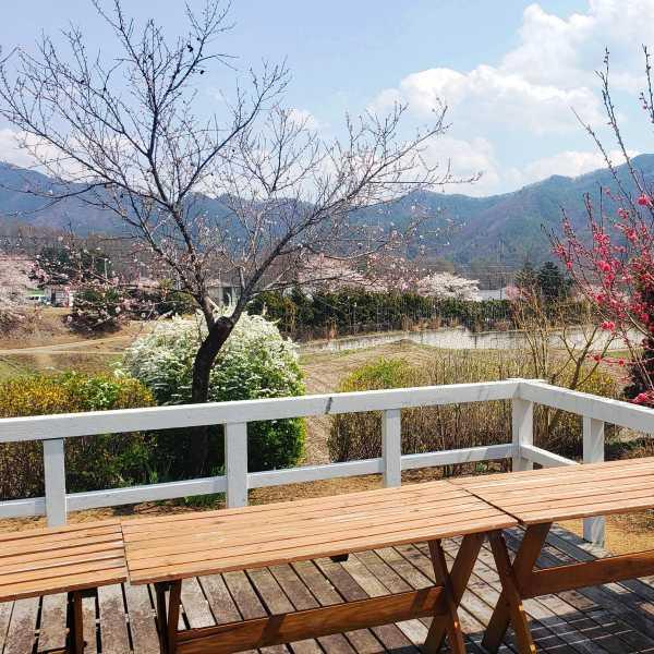 【館外】テラスからの眺め。春は花桃、桜、雪柳などたくさんの花が目を楽しませてくれます。