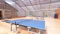 *多目的ホール/卓球、輪投げ、フィットネスマシーンなどなど、日頃の運動不足にお役立て下さい