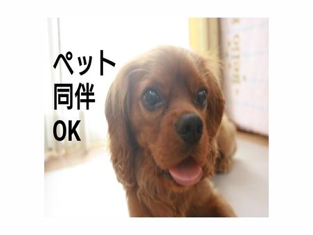 ペット同伴ルーム 定員4名様【和洋室PET】