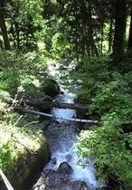 野沢温泉村の自然